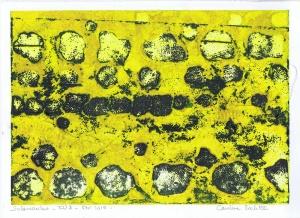 salamandre-EU3jaune---copie